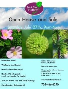 Not So Hollow Open House!