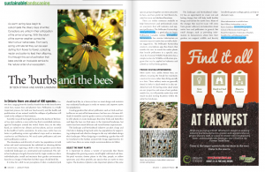 Landscape Trades Magazine Article on Pollinators