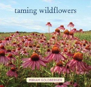 Taming Wildflowers