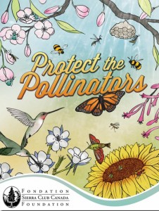 Protect the pollinators poster