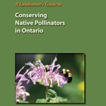 Conserving Native Pollinators in Ontario